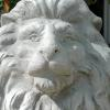 If you were born in August you are a Leo.  Our Leo Lions greet our guests.